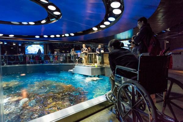 New England Aquarium Boston