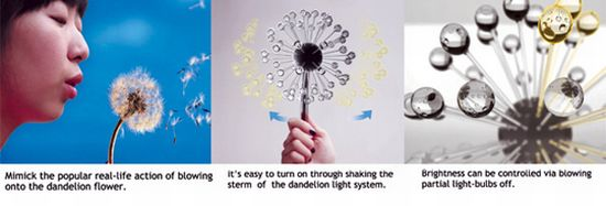 dandelions  03
