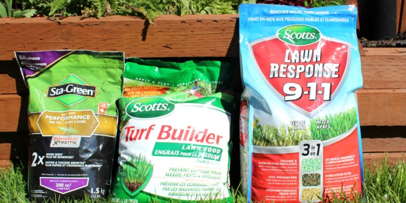 The Word of the Week is Fertilizer