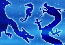 やっぱり竜が好き!「竜」と「ドラゴン」の違いについて