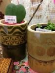 三嶋柄竹植木鉢