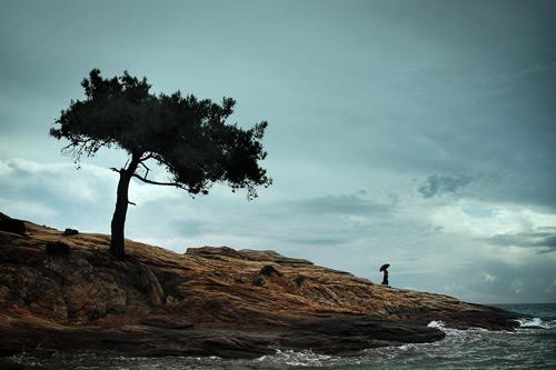 A Inspiração da Fotografia Conceitual