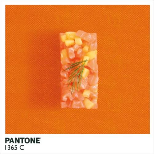 pantonefood-8