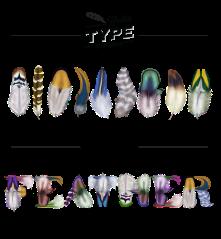 FeatherType