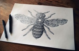 alex-konahin-ink-illustrations-15
