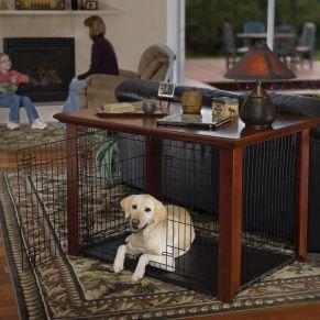 Mesa de apoio adaptada para cães