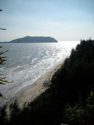 La plage sous la forêt de filaos
