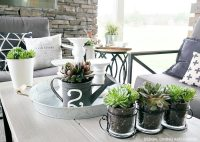 Decorating With Succulents - Taryn Whiteaker