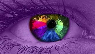 Веб-дизайн: как привлечь внимание через цвет