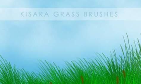 Очень полезные травяные PSD кисти