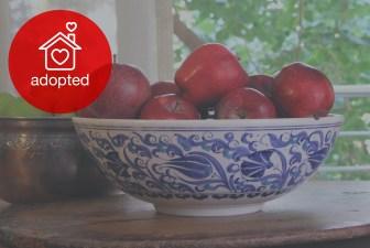 3001-hand-painted-iznik-bowl-adopted