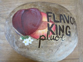 Flavor King Pluot