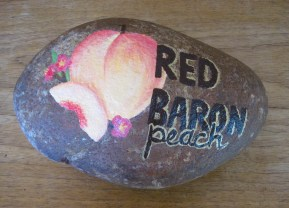 Red Baron Peach