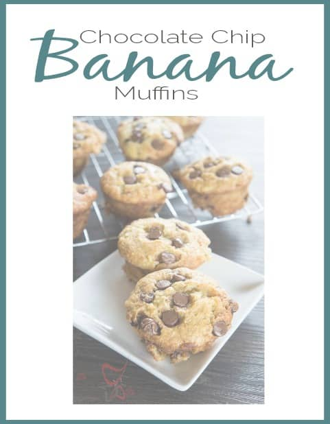 chocolate-chip-banana-muffins