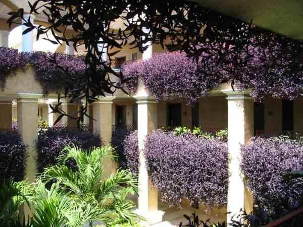 Adventura Spa Palace