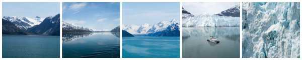 Glacier Bay Collage