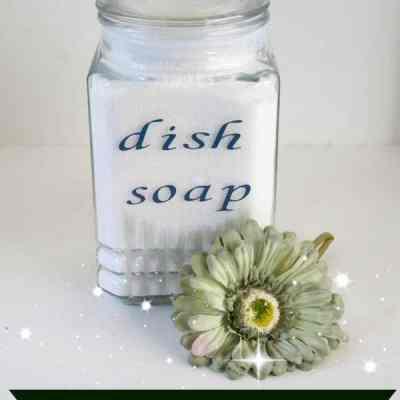 Homemade Dishwasher Detergent!