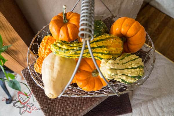 2014 Fall Home Decor- Natural Elements for Fall Decorating