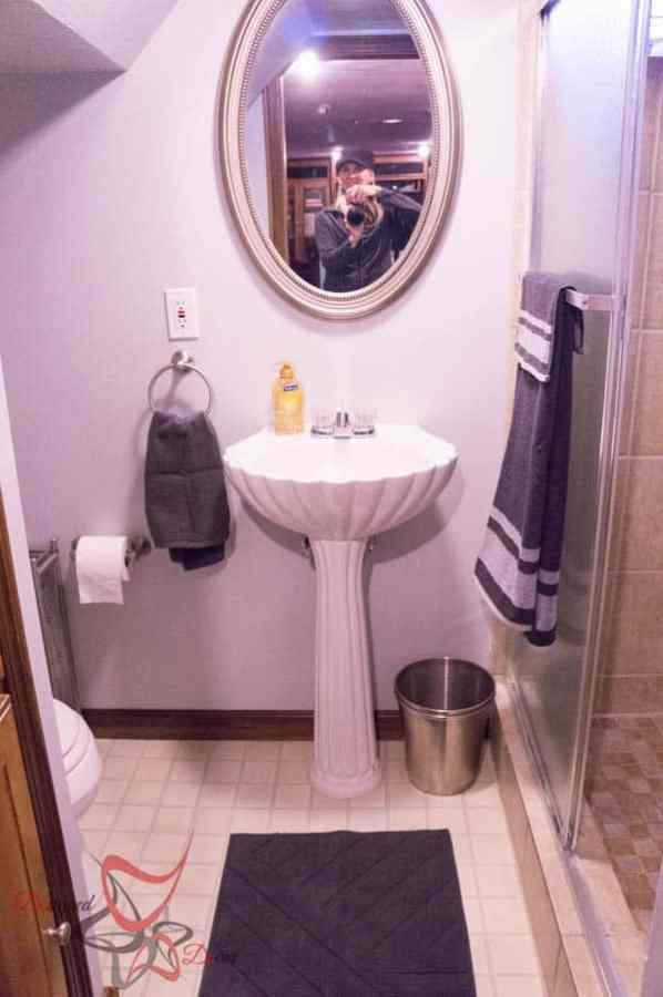 Updating the Basement Bathroom-6