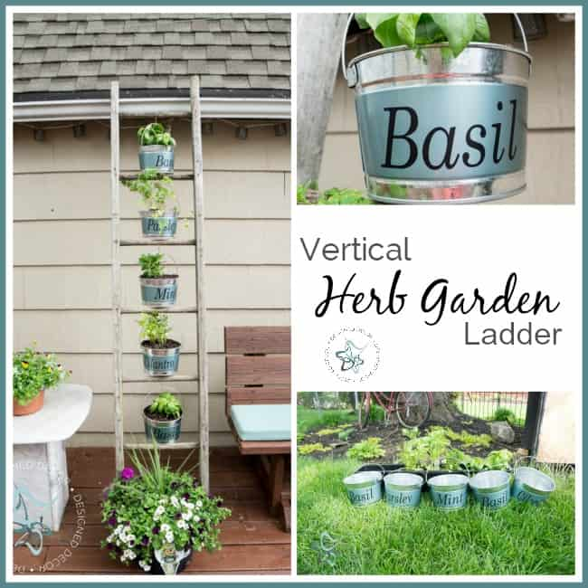 Vertical-Herb-Garden-Repurposed-Ladder