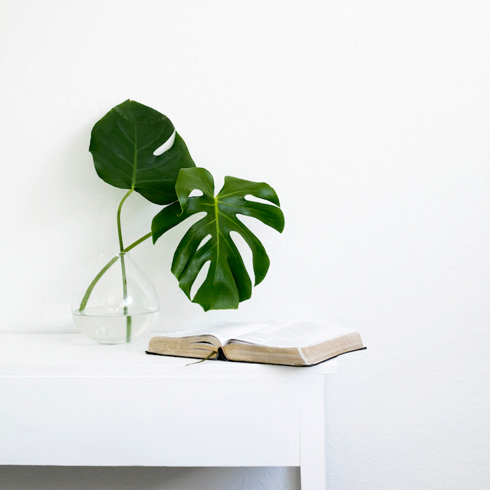 What I Learned about Living with Less + Minimalism | designedsimple.com
