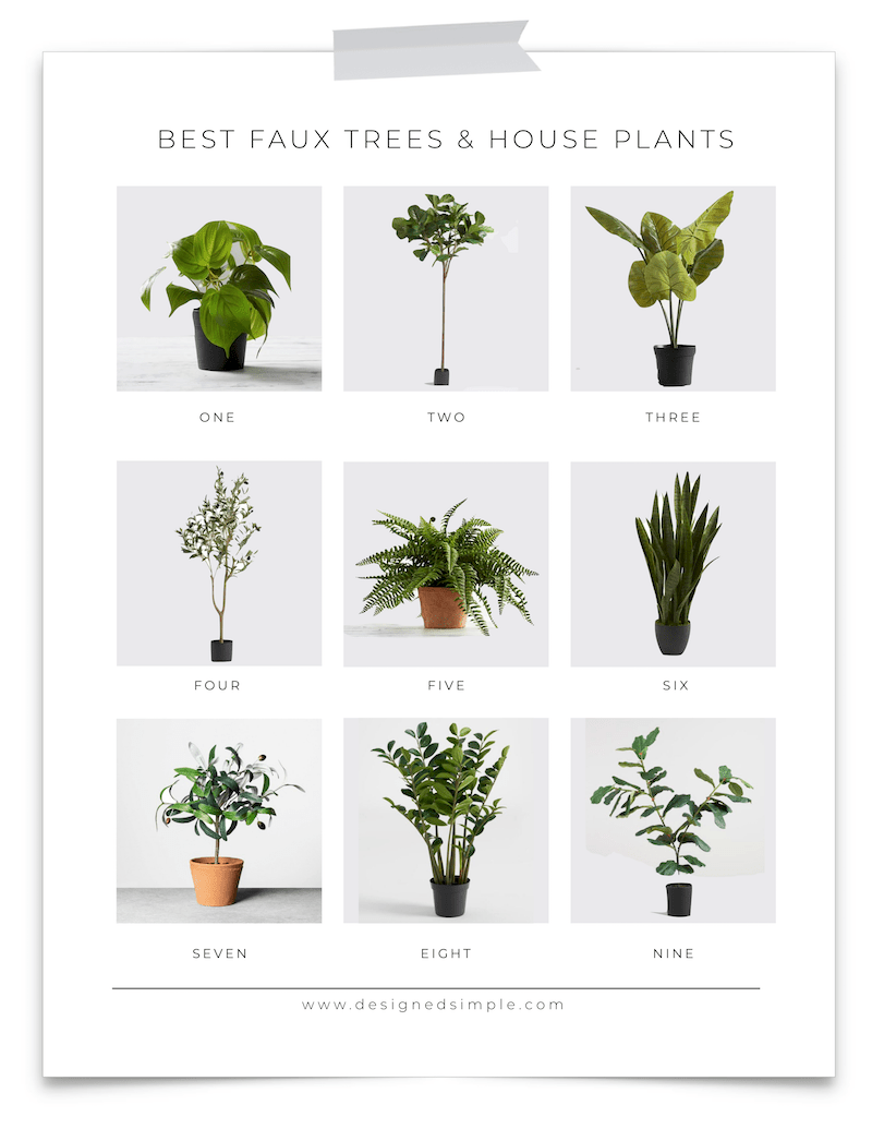 Best faux trees & house plants for the home! | From fiddles to olive trees and a few in-between. Keep it simple and easy with faux! | Designed Simple | designedsimple.com