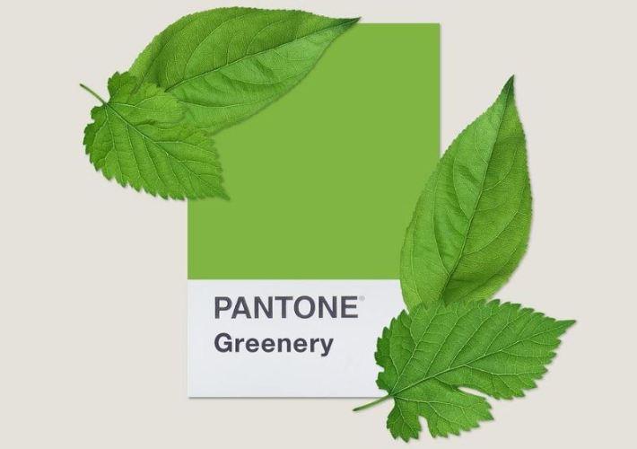 Pantone alege culoarea anului 2017 - Greenery