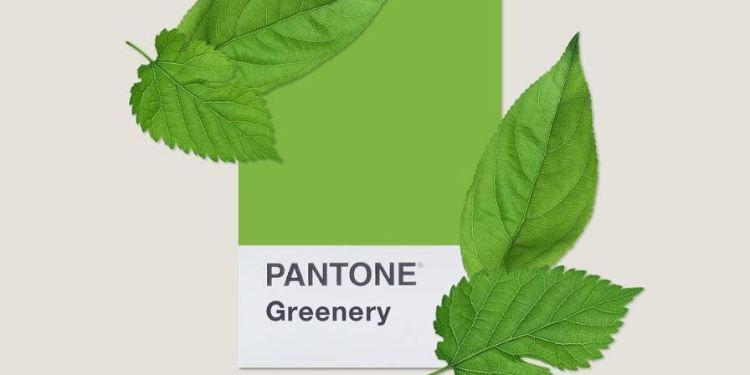 Pantone alege culoarea anului 2017: Greenery