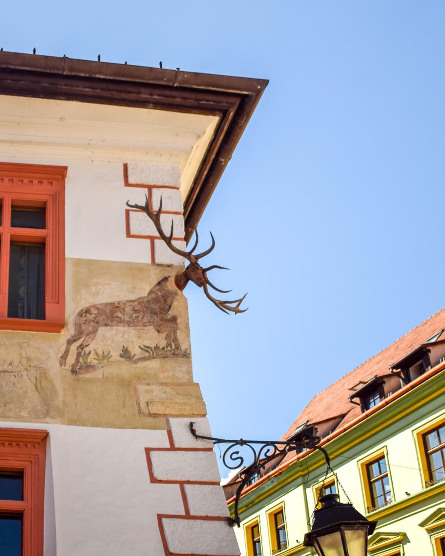 Casa cu Cerb - Sighișoara, România