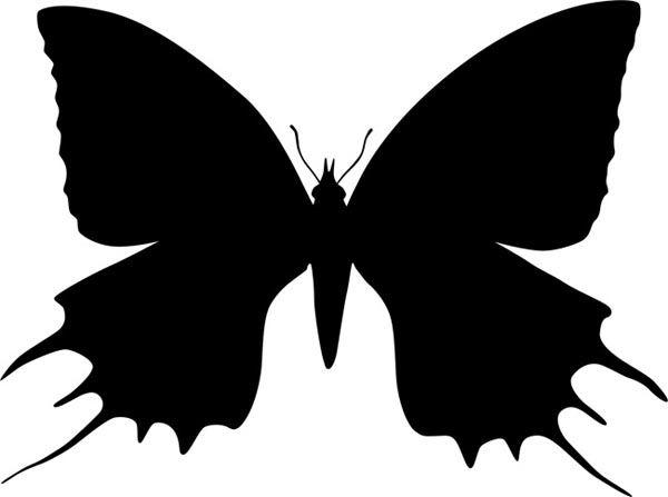 Perhonen epätavallinen siivet