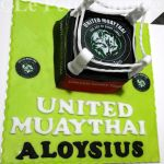 Muay Thai Boxing Ring Customized Fondant Cake