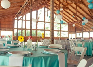 teal wedding theme