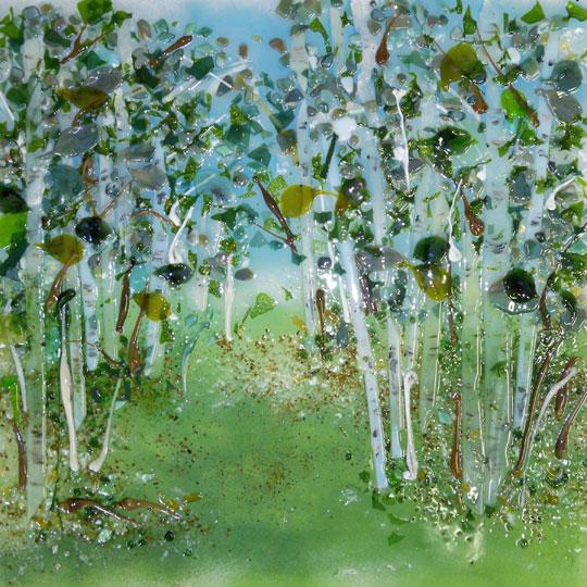 Glass Kitchen Backsplash Grove of Birch Trees  Designer