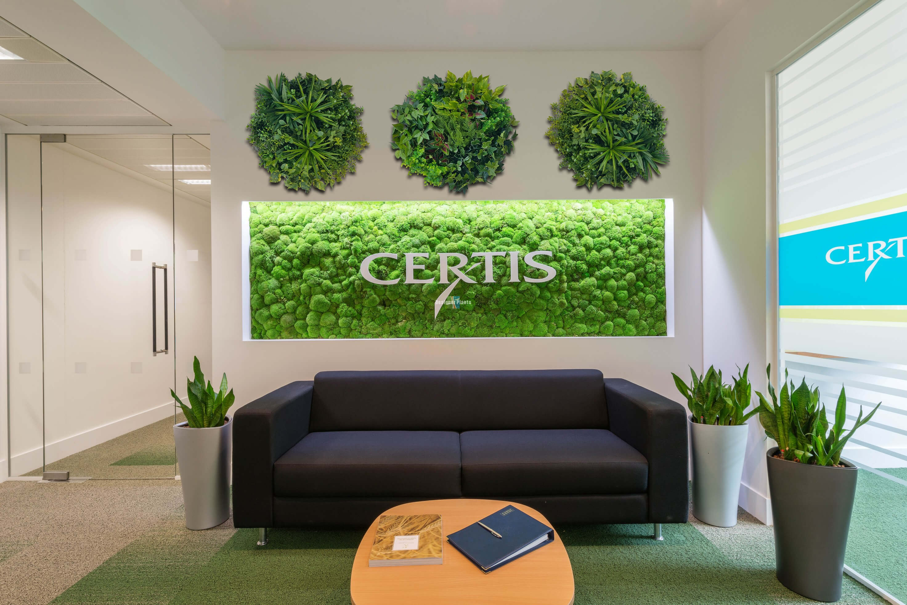 living room boston contemporary design stunning green wall disk transformations - before & after