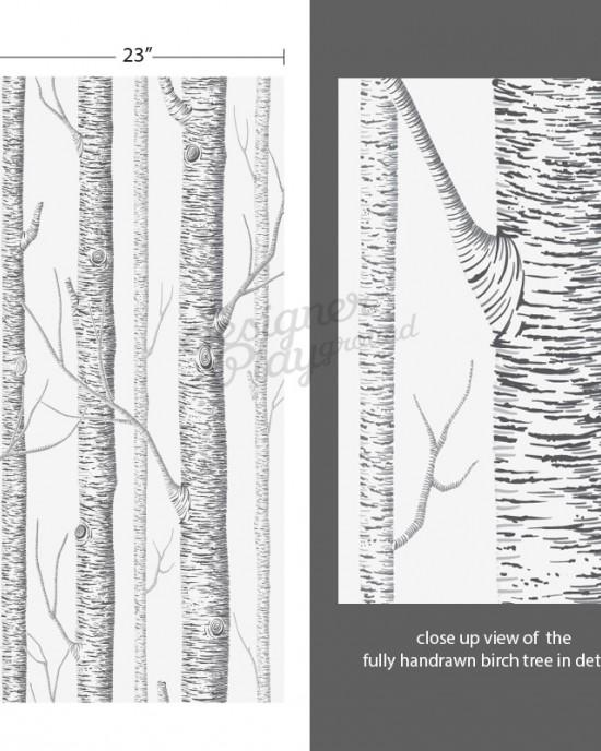 birch trees wallpaper peel