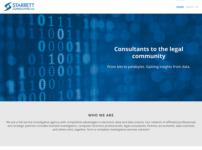 Starrett Consulting Website