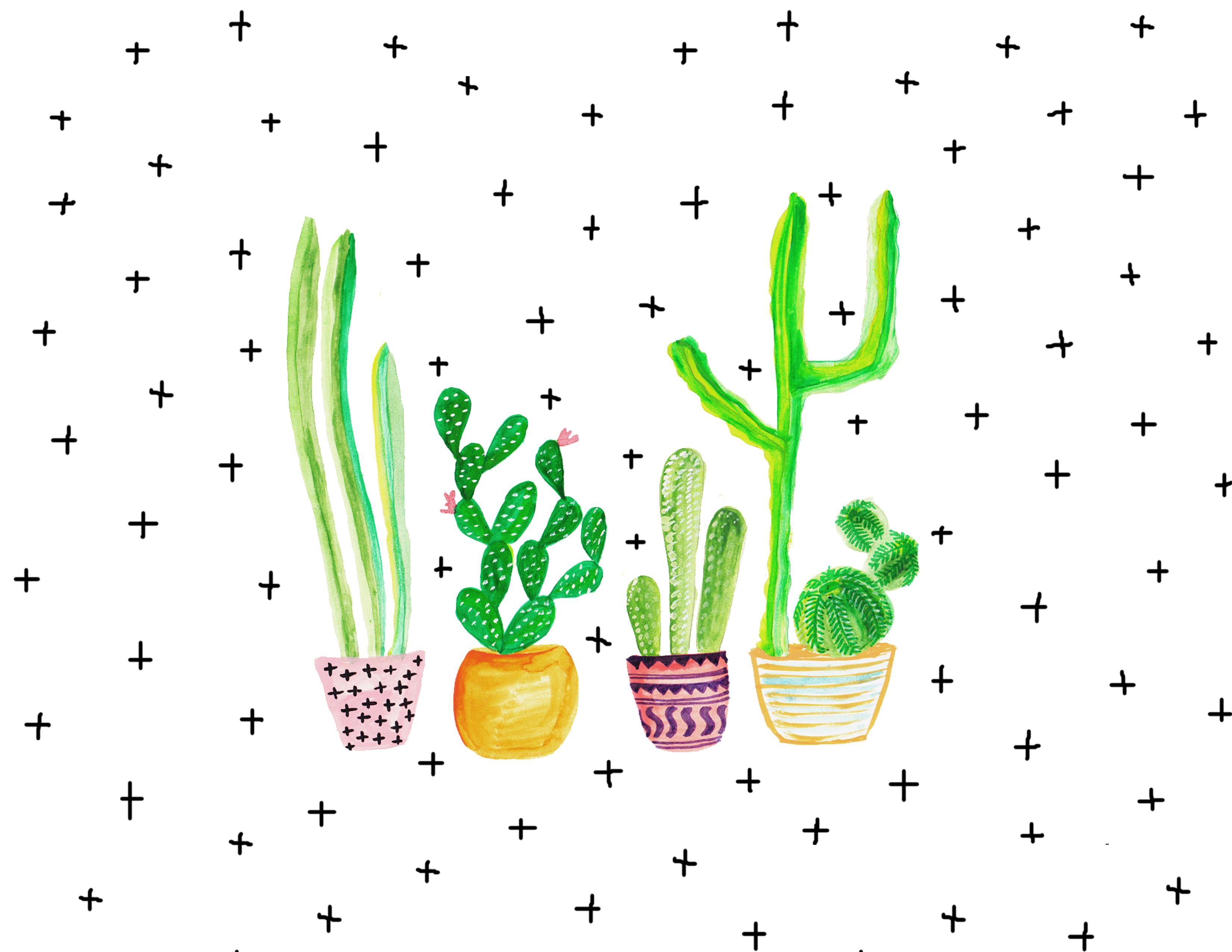 Current Trends Cacti