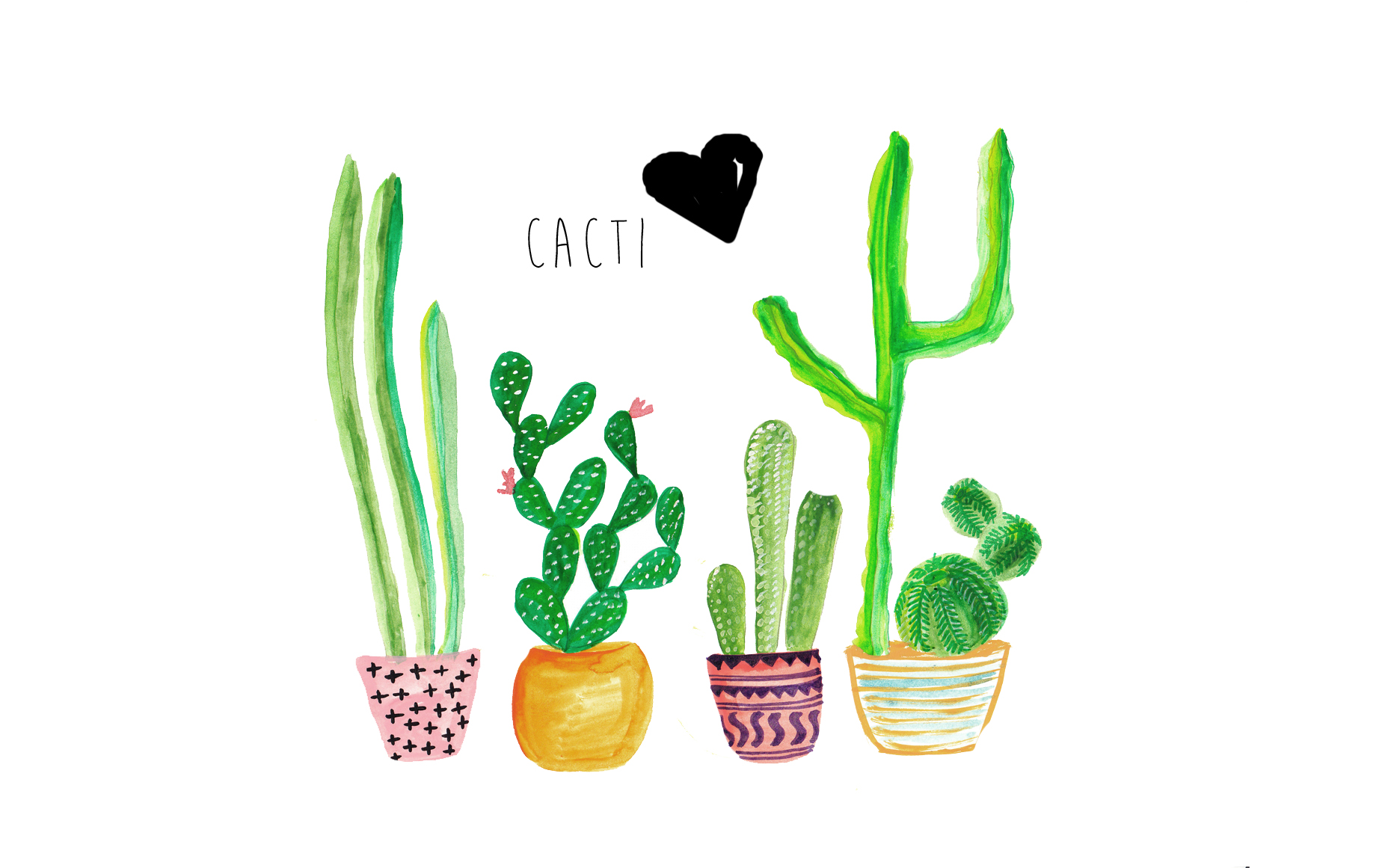 Cute Adventure Is Out There Wallpapers Current Trends Cacti