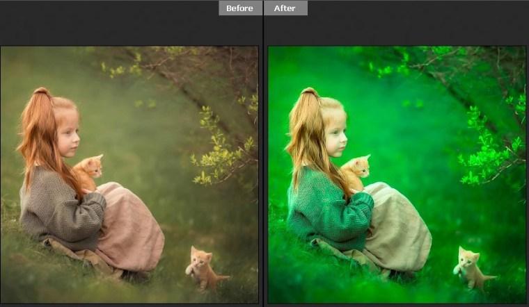 Top 6 Green Tones Free Camera Raw Presets