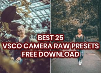 Camera Raw Presets Free Download