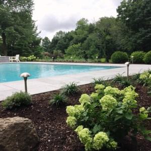 pool and landscape Redding