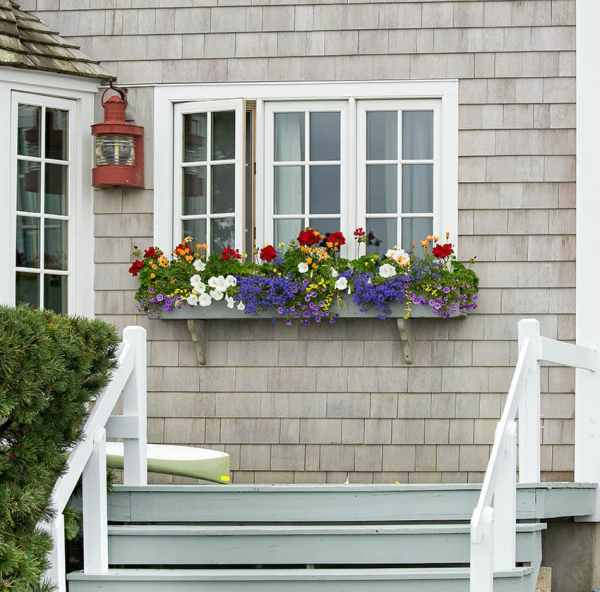 Houses with Window Flower Boxes