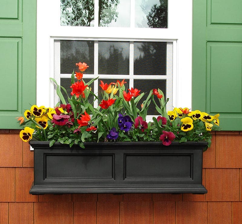 37 Gorgeous Window Flower Boxes (with Pictures)