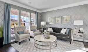 living gray traditional pattern wood dark floors idea elegant classic
