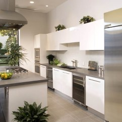 Greenery Above Kitchen Cabinets Remodel Decorating Ideas For The Space ...
