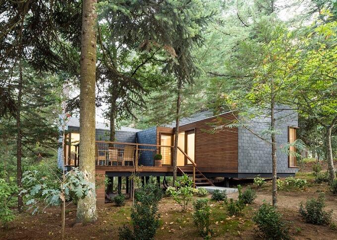 Eco-friendly-woodland-cabins