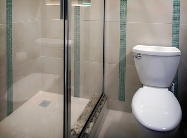 Shower-Bathtub-toilet