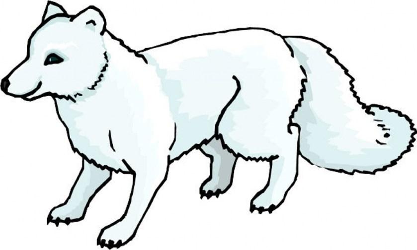 arctic fox coloring download arctic fox coloring for free