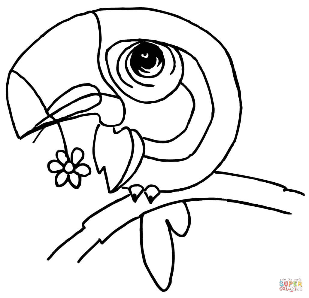 Beak coloring, Download Beak coloring