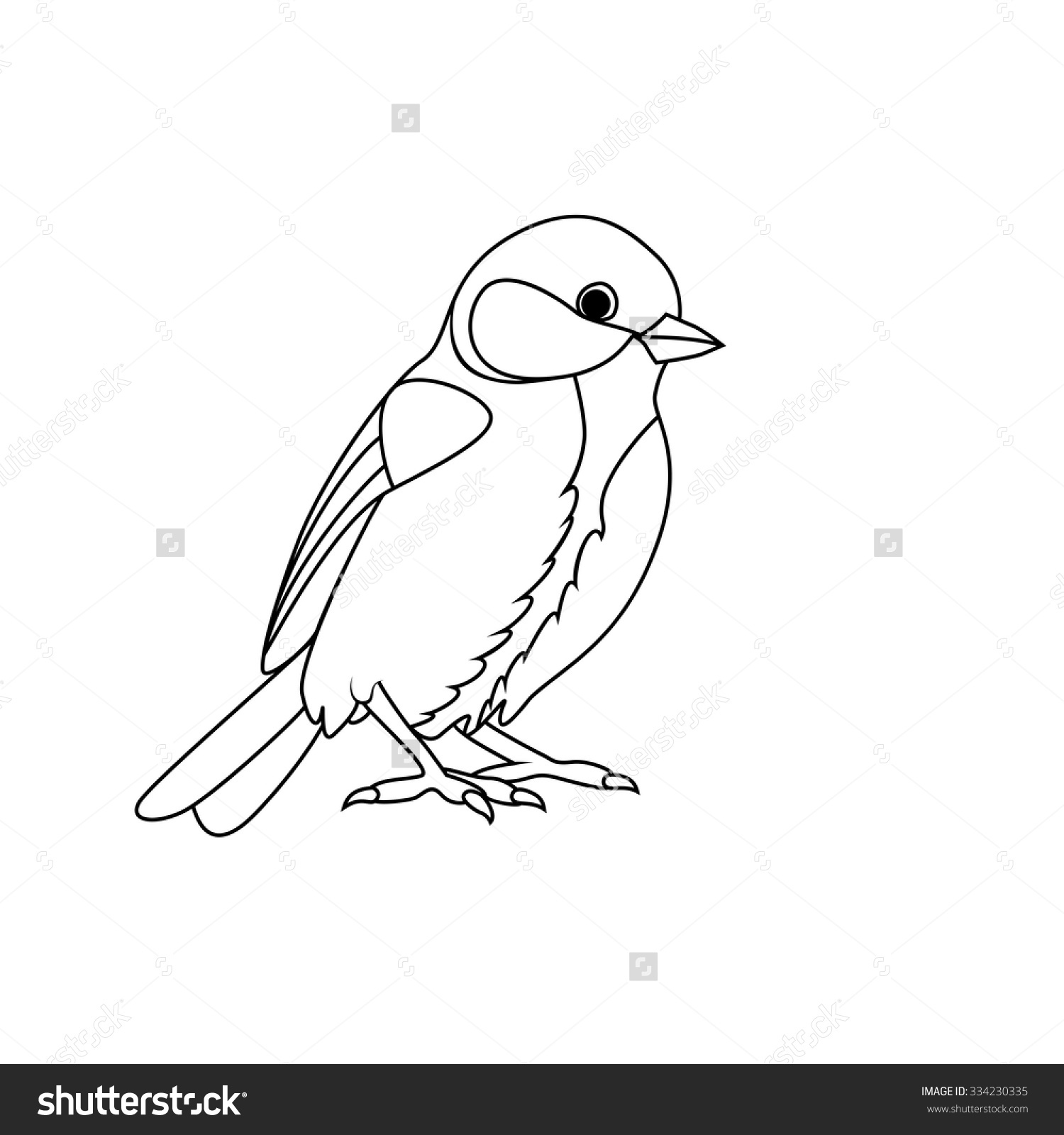 Titmouse coloring Download Titmouse coloring for free 2019